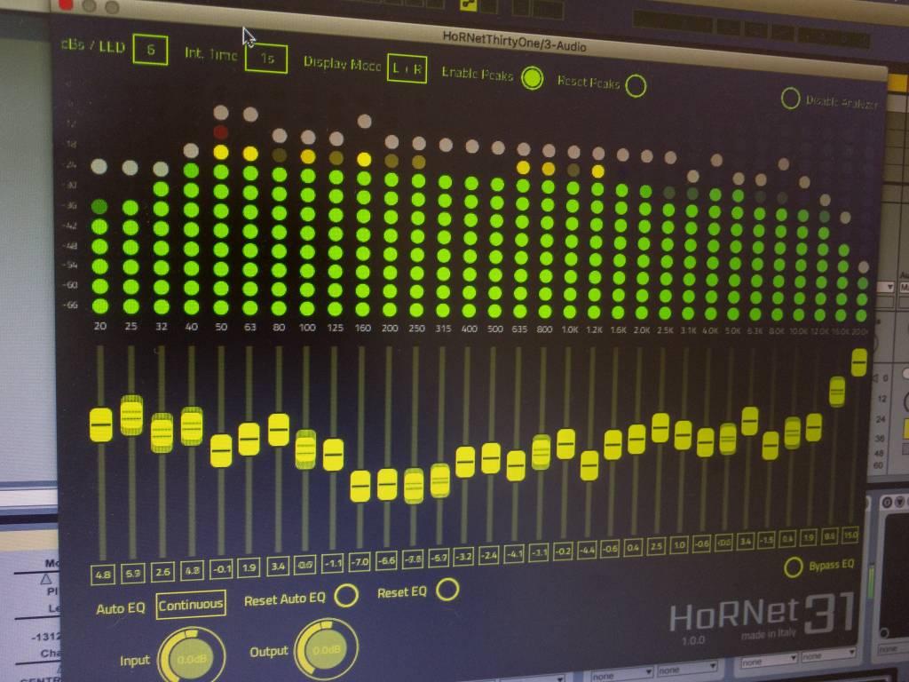 HoRNet ThirtyOne, spectrum analyzer and auto eq
